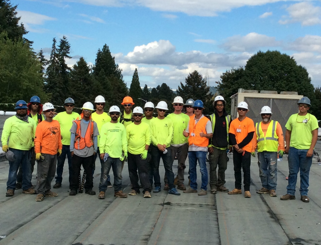 Mountain View Middle School Progressive Roofing